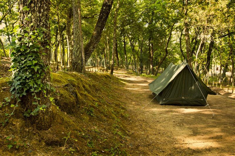 Camping I Europa Italien Toscana Trasqua Campingplads